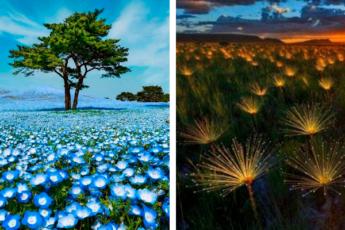 Уникальные снимки нашей Планеты, которые раскрывают ее красоту