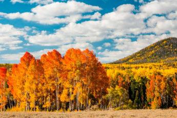10 мест в России, где самая красивая осень